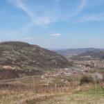 Budžet za poljoprivredu u opštini Arilje na nivou prošlogodišnjeg